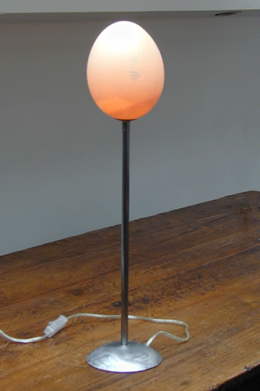 Decorative Acccent Table Lamps Made From Ostrich Eggs